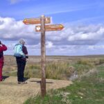 Birdwatching - looking for the Great Bustard
